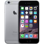 Apple iPhone 6 grijs / 64 GB