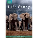 DFW BBC Earth - Life Story