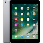 Apple iPad 32 GB / grijs