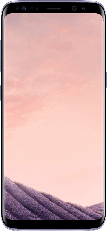 Samsung Galaxy S8 64 GB / grijs