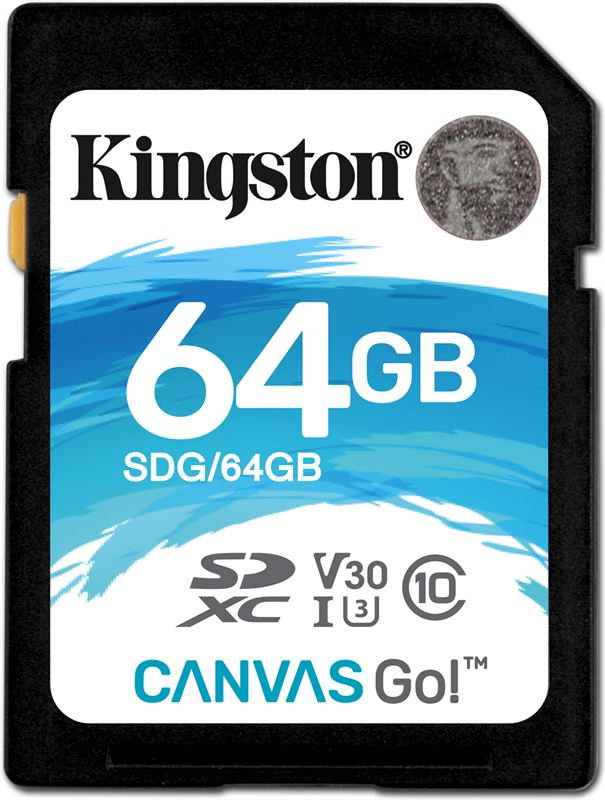 Kingston Canvas Go!