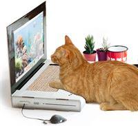 SuckUK Katten Scratch laptop Krabpaal voor katten