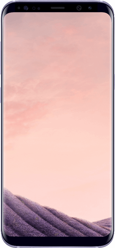 Samsung Galaxy S8+ 64 GB / grijs
