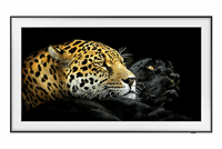 Samsung QE75LS03AAUXXC 2021
